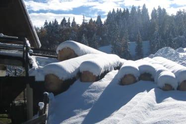 tiefer Winter -Ruhe und Stille in der Natur