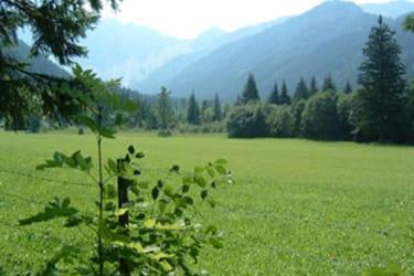 Märchenwiese