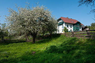Biogasthaus im Frühling
