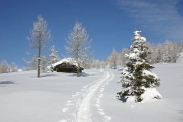 Fußmarsch zur Hütte