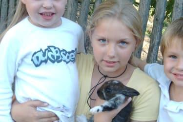 Steffi und der Hase