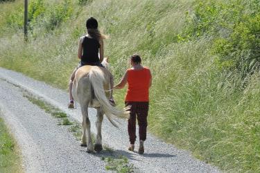 Spaziergang mit Pferd Haberlehof