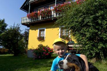 Hofhund Benno
