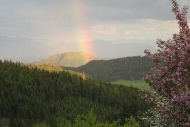Regenbogen übern Ulrichsberg