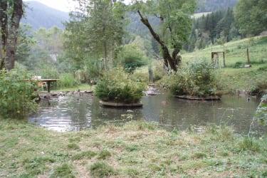 Hauseigener Teich
