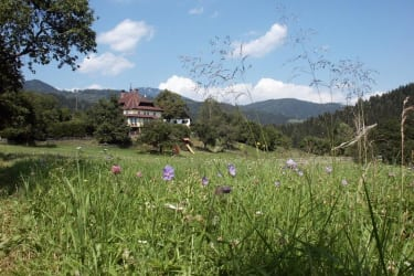 Ferienhof Haberzettl im sommer