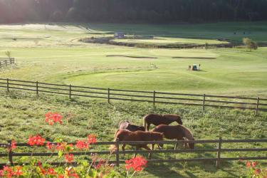 Golfplatz am Mentehof