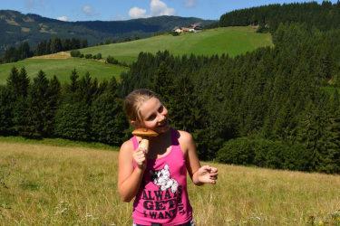 Pilzesammel im eigenen Wald