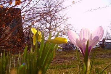 Ostern, Frühling