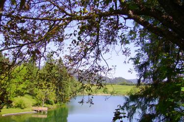 idyllischer Kraigersee