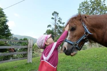 Maxi unser Pony wird gerne gestreichelt :)