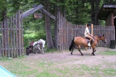 Ausritt mit den Pferden