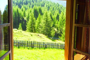 Vom Fenster aus