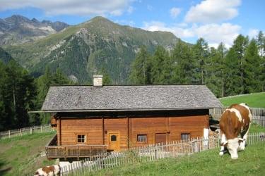 Hütte und Umgebung