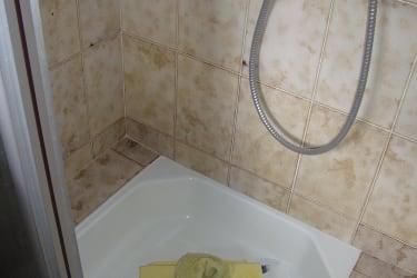 Dusche Minze