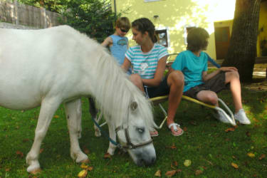 unser Pony Lilli...