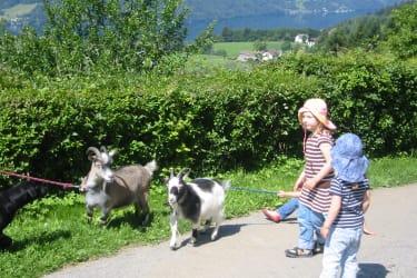Die Ziegen Doris und Evi..