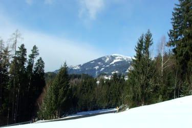 Obere Wiese mit Blick auf Millstätter Alpe