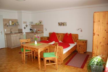 Einzimmerapartement mit Kochnische