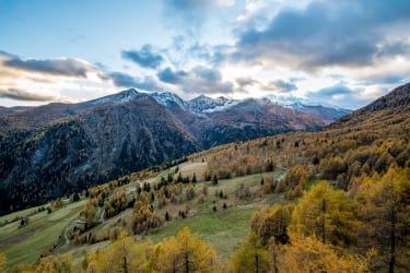 Goldgräberhütte - rundum umgeben von der Natur