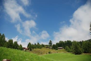 Der Blick von der Hütte nach oben !