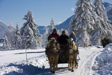 Pferdeschlittenfahren