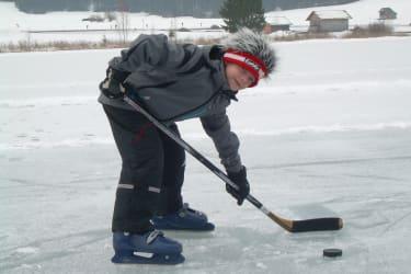 Stefan Hockey
