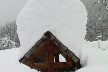 über ein Meter Schnee 2010