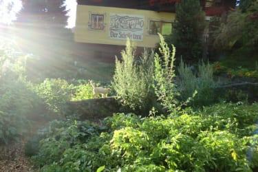 Sonnenstrahlen im Biologischen Bauerngarten
