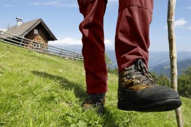 Wandern am Tschiernock (© Prokop)