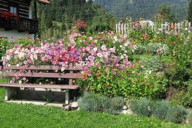 Omas Blumengarten
