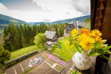 Balkon Ferienwohnung Unterdach