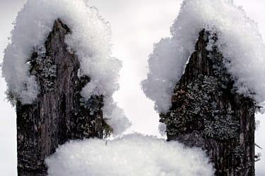 Schneehübchen