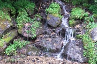 Natur spüren...