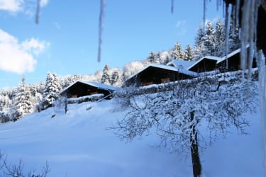 Winter am Koflerhof
