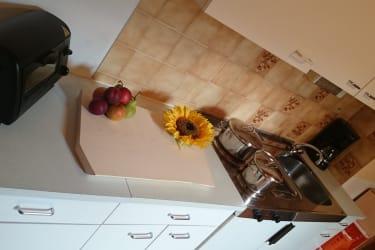 Sonnenblumen Wohnung