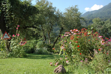 Idyllischer Kräutergarten