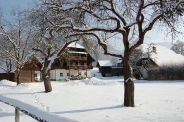 Schneeambiente