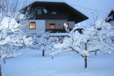 Winter beim Leben