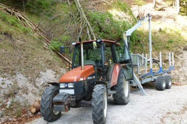 Traktor, bei der Waldarbeit