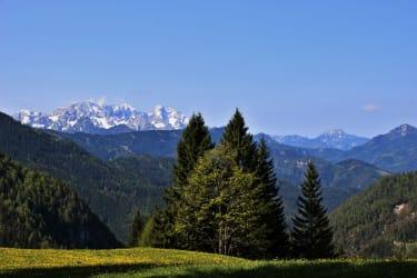 Aussicht Alpengasthof Riepl Luschaalm