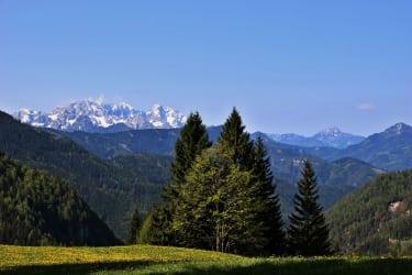 GH Riepl, Luschaalm, Wanderung auf die Topica (kinderleicht)  1/2 Autostunde ab der Hütte entfernt