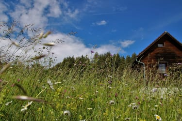 Prebernighütte in der Sommerwiese