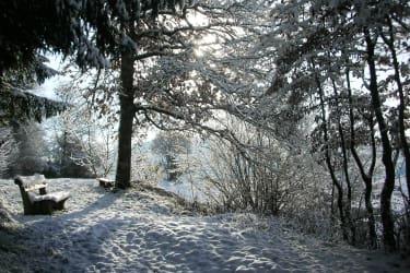 winterfoto bank