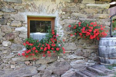 Blumensschmuck
