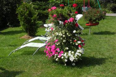 Blumen zwischen den Liegen