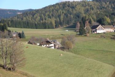 Hanslbauerhof mit Wiesen
