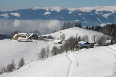Panoramablick-Saualpe