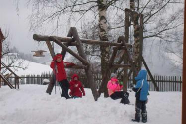 Schneeschaukeln