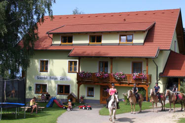 Sommer am Bauernhof Pension Juri